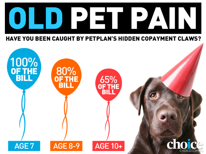 Old pet pain