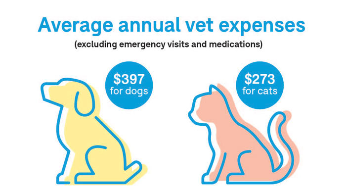 average annual vet expenses