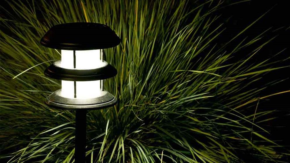 Garden lights buying guide Gardening CHOICE
