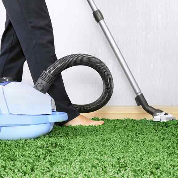 Carpet cleaning options guide laundry and cleaning choice vacuum cleaners solutioingenieria Choice Image