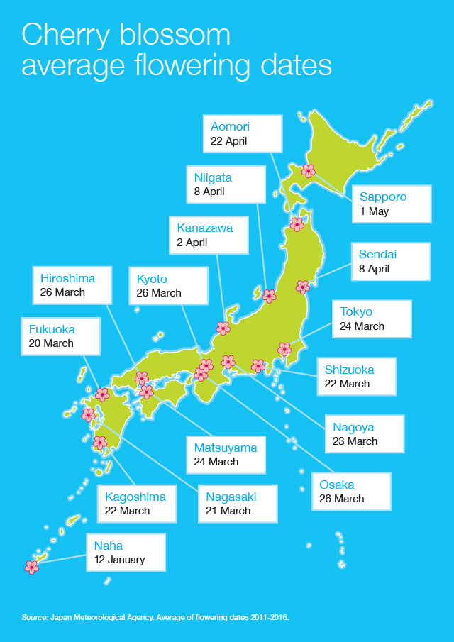 Map of Japan with dates of cherry blossom flowering