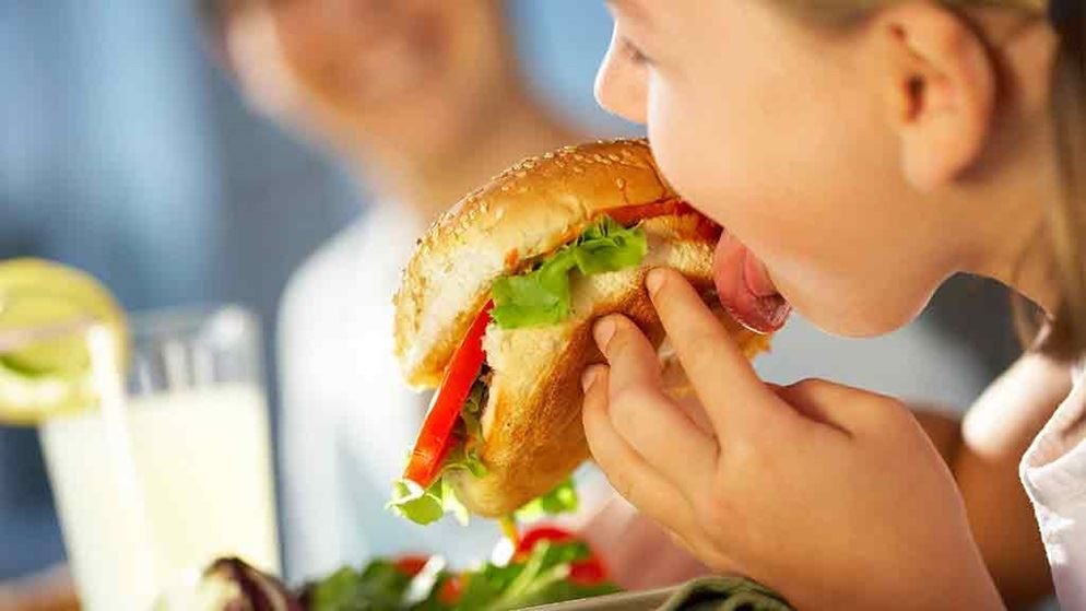 the issues with junk foods and the healthy solution to the junk food epidemic in america Understanding the american obesity epidemic  to the one you may recognize from heart-healthy foods in the  can be a healthy alternative to fast food, .