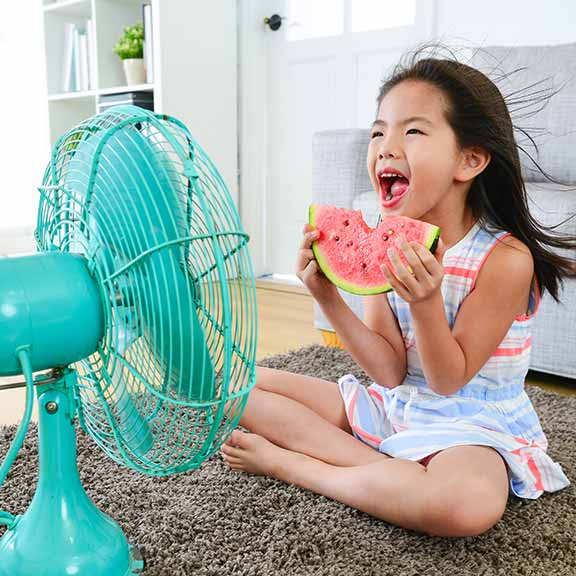 Fans to keep your home cool in summer