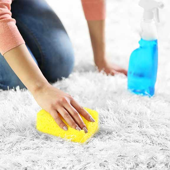 Carpet cleaning options guide laundry and cleaning choice how we test carpet cleaner stain removers solutioingenieria Choice Image