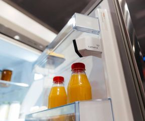 Bosch NoFrost fridge with camera