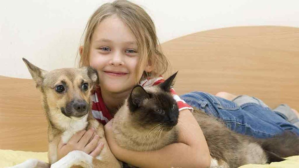 Image result for Benefits Of Purchasing Insurance For A Pet