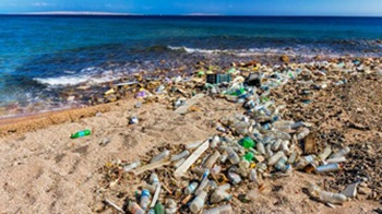 Bottled water pollution on a beach_resize
