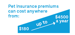 pet insurance premiums infographic