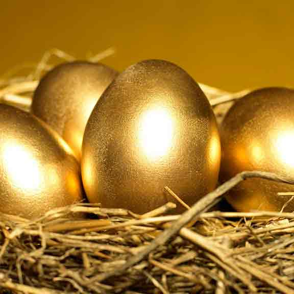 golden eggs in nest square