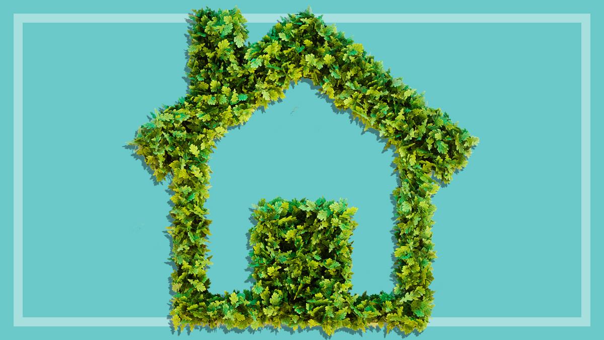 Five Ways To Reduce Your Householdu0027s Energy Use   Energy Saving