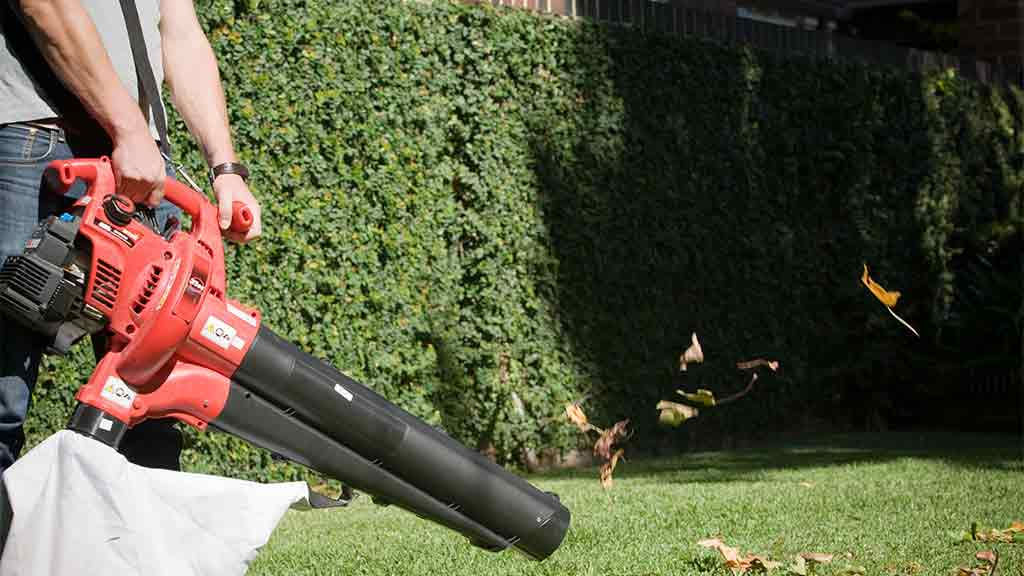 How To Buy The Best Leaf Blower Choice