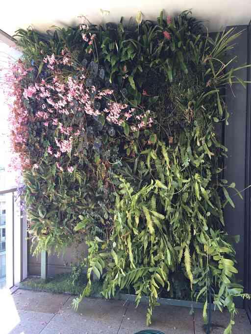 Bunny Gardiner Hillu0027s Vertical Garden On Her Inner City Apartment Balcony  In Pyrmont.