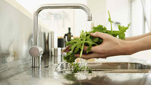 salad leaves being washed under tap