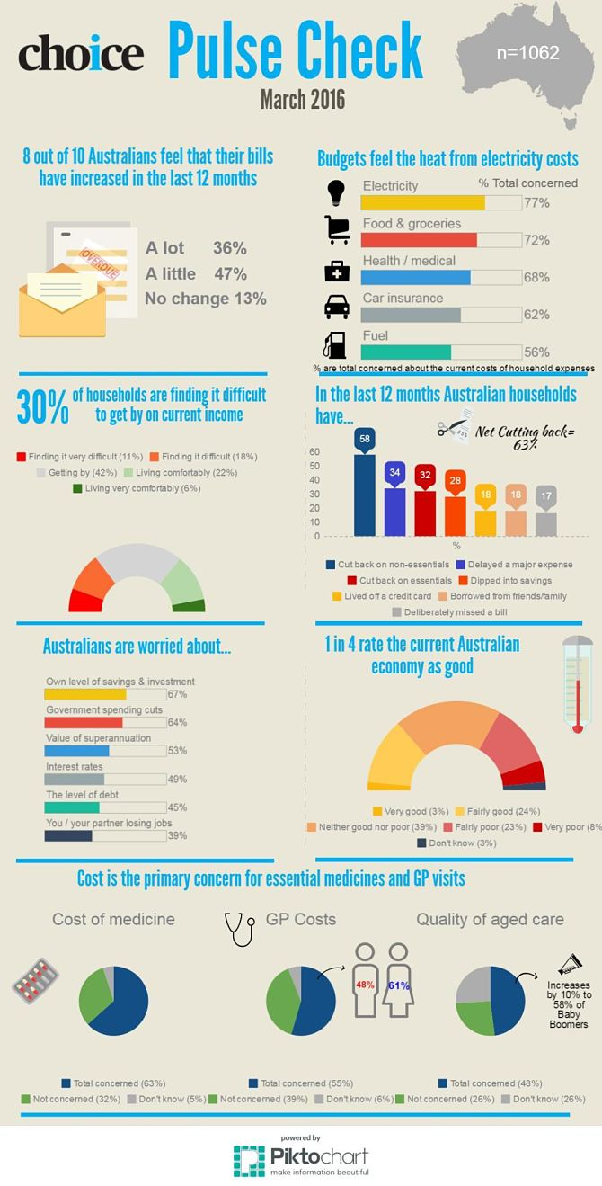 Consumer Pulse infographic with summary of results