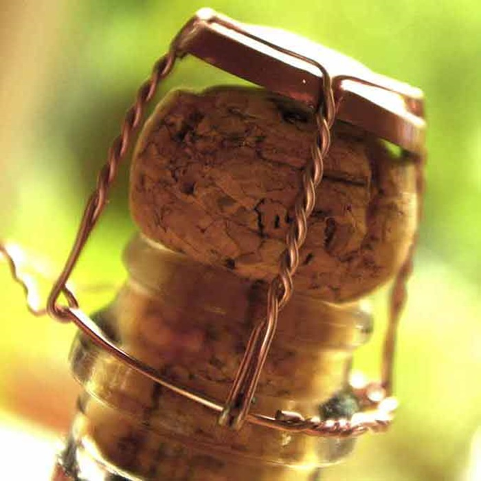 closeup of champagne cork in bottle square